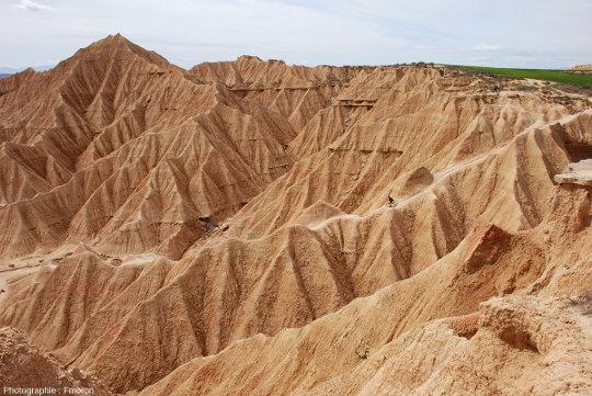 Vue de détail sur une cuesta ciselée par ce type d'érosion en badlands, Bardenas Reales, Navarre espagnole