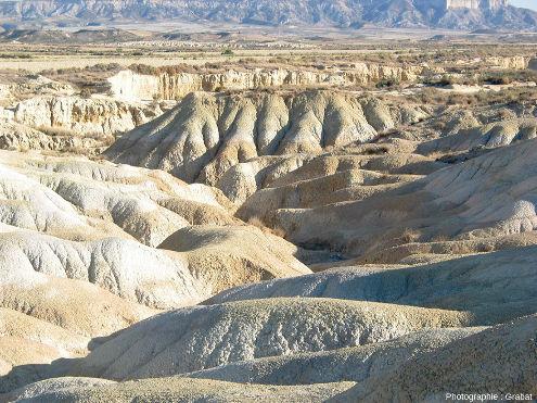 Mini-canyon creusé dans les couches tabulaires d'argile au sein des Bardenas Reales, Navarre espagnole