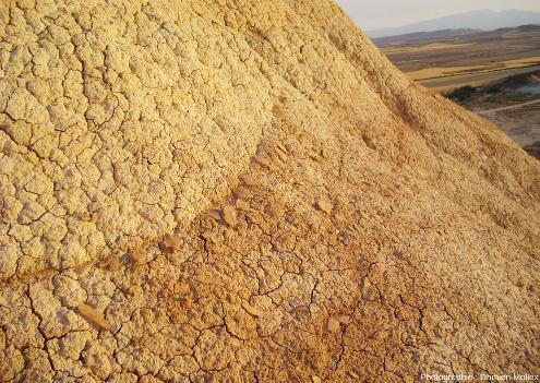 Détail d'une couche de gypse qui, dégagée des argiles et disloquée par l'érosion, forme des plaquettes translucides interstratifiées dans (ou posées sur) les argiles, Bardenas Reales