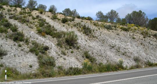 Vue d'ensemble sur d'autres microplis très disharmoniques et à faible rayon de courbure affectant des gypses oligocènes dans le bassin de l'Èbre, sur le bord de la RN121, 60km au Sud de Pampelune (Navarre, Espagne)