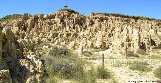 Los Aguarales de Valpalmas, mini badlands, province de Saragosse, Aragon, Espagne