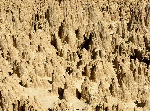 Vue de détail sur un secteur des Aguarales de Valpalmas et sur les ciselures sculptées par l'érosion due au ruissellement