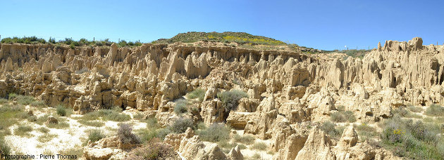 Vue d'ensemble d'un secteur des Aguarales où une couche de grès dur termine l'escarpement principal