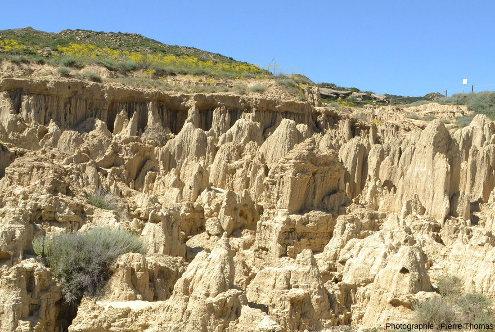Vue de détail d'un secteur des Aguarales où une couche de grès dur termine l'escarpement principal