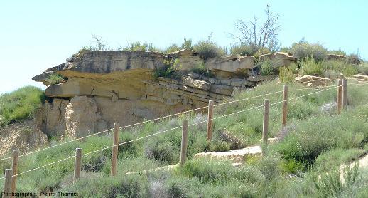 Détail de la couche de grès vue sur les deux photos précédentes, Los Aguarales de Valpalmas