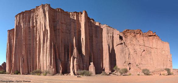 La Cathédrale correspond en fait à la partie NE (gauche) d'une paroi plus longue, qui se trouve sur la rive gauche (Sud) du canyon de Talampaya (Argentine)