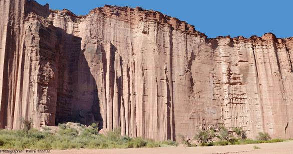 Vue d'ensemble d'une bonne longueur de falaise de la rive gauche environ 1km en aval de la Cathédrale, Parc national de Talampaya (Argentine)