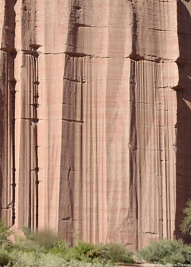 Détail du centre de l'image ci-dessus, Parc national de Talampaya (Argentine)
