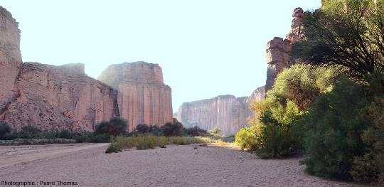 Vue d'ensemble de la rive droite du canyon du rio de Talampaya (Argentine), 1km avant son débouché aval