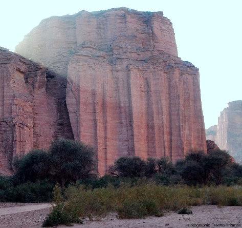 Vue de détail de la rive droite du canyon du rio de Talampaya (Argentine), 1km avant son débouché aval