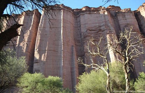 Vue sur un secteur de la rive gauche du canyon du rio de Talampaya (Argentine), 1km avant son débouché aval