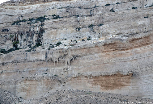 Vue d'ensemble sur les stalactites pendant le long des falaises d'Hasik, Oman
