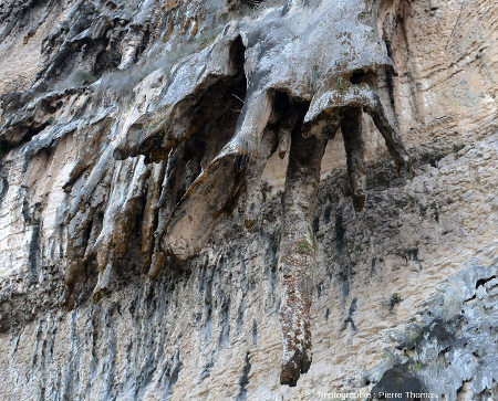 Détail des travertins, de stalactites et autres concrétions obliques sur les falaise d'Hasik Park (Oman)