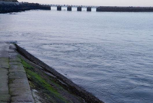 Remous en pleine eau dans le port de Port en Bessin, remous dus aux résurgences sortant sous pression sur le platier affleurant au fond du port de Port-en-Bessin