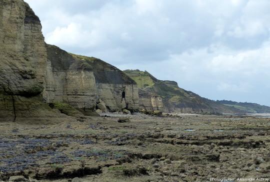 Vue sur les falaises et le platier de Sainte Honorine-des-Pertes