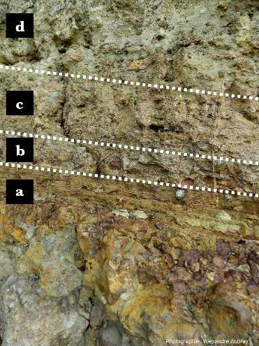 Détail de la formation de l'Oolithe ferrugineuse de Bayeux, image interprétée