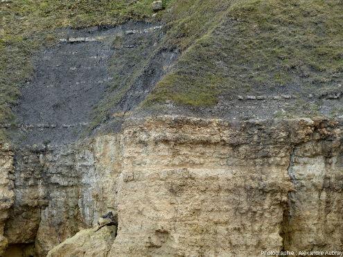 Limite entre les calcaires à spongiaires et les marnes de Port-en-Bessin
