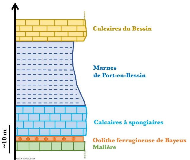 Log stratigraphique des formations sédimentaires des falaises de Sainte-Honorine-des-Pertes, Calvados