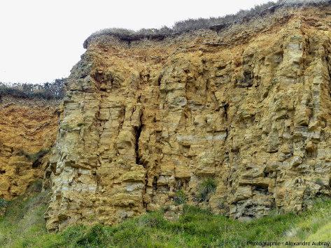 Calcaire du Bessin présentant des fossiles de Thalassinoïdes