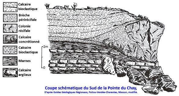 Schéma de la falaise de la Pointe de la Belette (pointe Sud de la presqu'ile du Chay) telle qu'elle était juste avant 1978