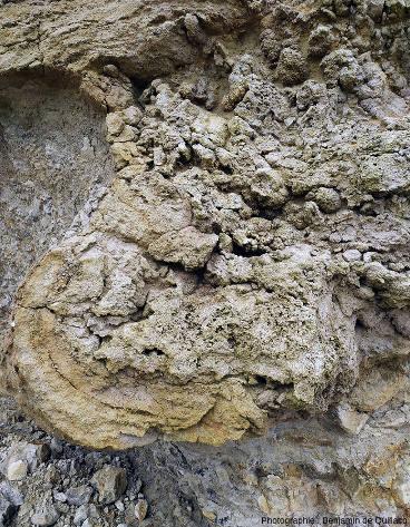 Zoom sur la boule calcaire du centre de l'image précédente s'enfonçant dans les marnes sous-jacentes