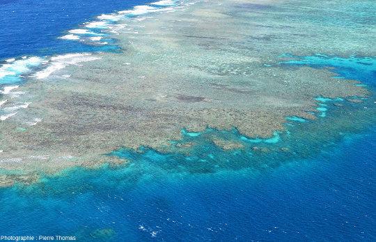 """La """"côte"""" située entre la barge visible sur la figure 1 et la pointe du récif principal de Moore Reef"""