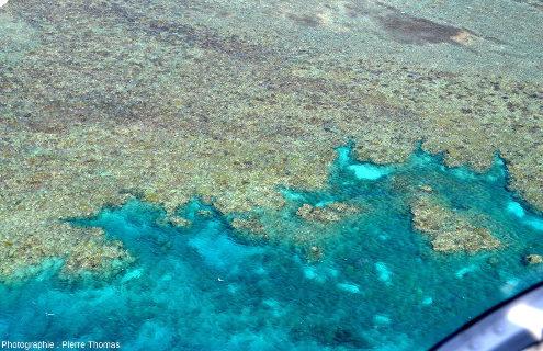 """Zoom sur la """"côte"""" située entre la barge visible sur la figure 1 et la pointe du récif principal de Moore Reef"""