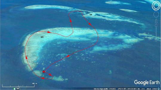 Vue aérienne, orientée vers le Sud-Est, de Moore (MR) et Elford (ER) Reefs, montrant le trajet approximatif de ce survol en hélicoptère (départ et arrivée au niveau de l'étoile rouge)