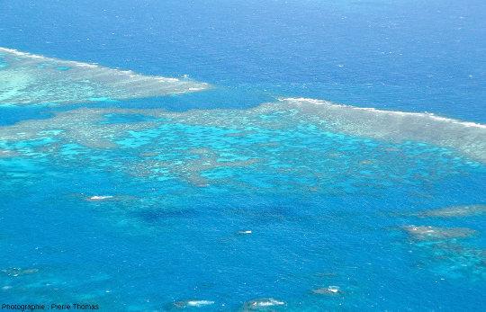 Zoom sur la passe centrale d'Elford Reef, Grande Barrière de Corail, Australie