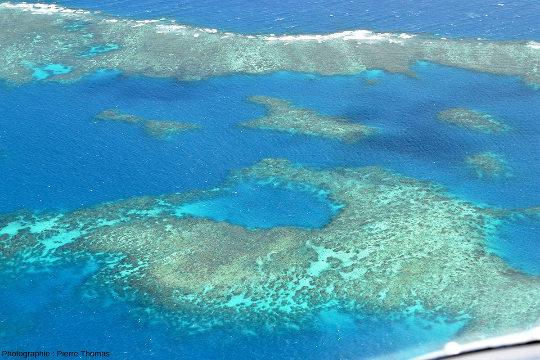 """Une zone """"découpée"""" d'Elford Reef, à 1,5km au Nord-Ouest de la passe des figures 17 et 18"""