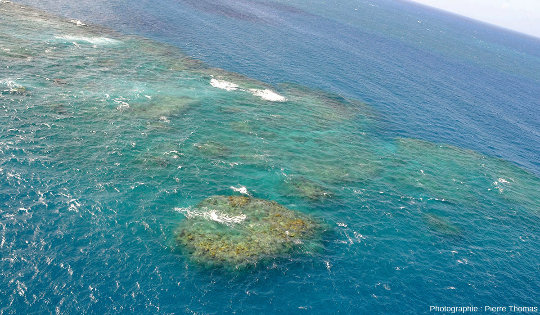 Récifs isolés au sein du quasi-lagon de Moore Reef, Grande Barrière de Corail, Australie