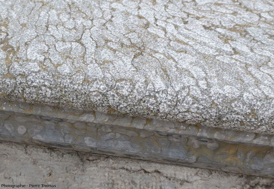 Zoom sur le rebord d'une dalle recouvrant le parapet du Puente Santa Catalina