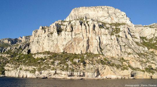 Couche d'Urgonien dont l'érosion forme des pinacles, entre les calanques de Sugiton et d'En-Vau
