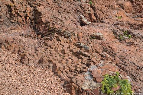 Prismes horizontaux de rhyolite permienne rouge vus par la tranche, le long du sentier littoral de la Batterie des Lions, Saint-Raphaël, Var