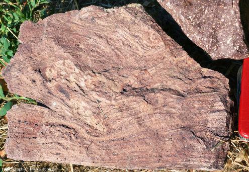 Échantillon de rhyolite de l'Estérel présentant une fluidalité très contournée
