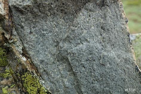 Détail d'une cassure fraiche d'andésite acide verdâtre, secteur Sud du Pic du Midi d'Ossau, Pyrénées-Atlantiques