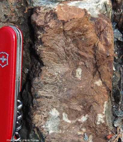 Détail de la coulée de komatiite présentant de belles structures spinifex