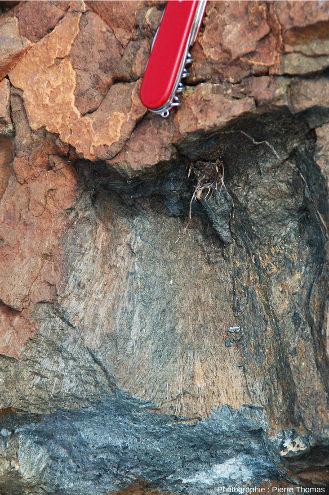 Détail de la coulée komatiitique présentant de belles structures spinifex