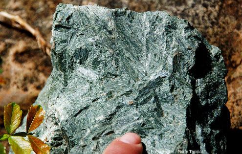 Échantillon photographié sur place montrant des aiguilles d'olivine ou de pyroxène orientées sans direction préférentielle