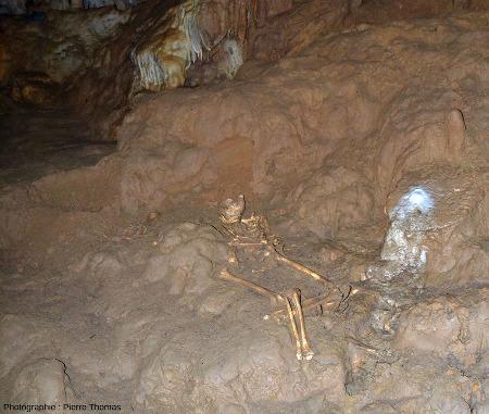 Vue plus large d'un squelette (datant de −5000BP, Âge du Cuivre) déposé bras et jambes repliés sur un dépôt d'argile à l'intérieur de la grotte de Foissac (Aveyron)
