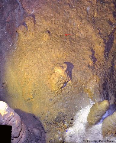 Traces de doigts de pied sur le sol (flèche bleue) et traces de phalanges d'une main sur la paroi (flèche rouge) dans la grotte de Foissac (Aveyron)