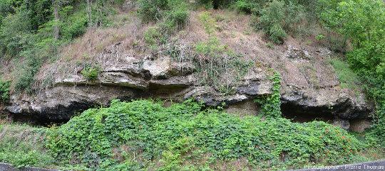 Affleurement des deux photos précédentes, situées à gauche de cette vue d'ensemble (Chemin du Vieux Collège, Feyzin)