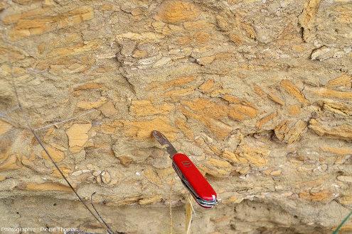 """""""Conglomérat"""" formé de """"galets mous"""" anguleux jaune-orangé assez vif pris dans une matrice de sable jaunâtre plus pâle, Saint-Fons (Rhône)"""