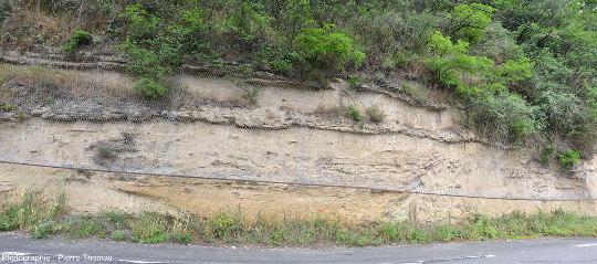 Vue générale sur cet affleurement de molasse à galets mous de Saint-Fons (Rhône)