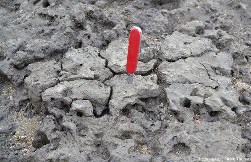 Détail d'un banc d'argile pré-fracturé pendant la marée basse pendant laquelle a été prise la photo