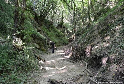 """Partie aval du réseau hydrographique qui n'est pas encore devenue """"canyon"""""""