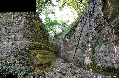 L'entrée de la branche Nord du canyon
