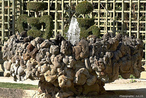 L'une des huit fontaines entourant le bassin de l'Encelade, fontaine constituée d'un pied et d'une vasque, tous deux entièrement recouverts/décorés de gogottes
