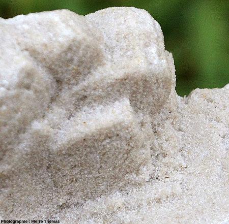 Détail de cet autre échantillon montrant la géométrie des cristaux et leur nature gréseuse