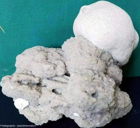 Une gogotte englobant de la calcite sableuse